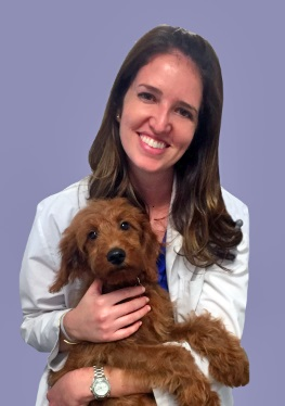 Dr. Jessie Dreyfuss, DVM is a Certified Veterinary Acupuncturist through the Chi Institute, and a Certified Canine Rehabilitation Practitioner through the Canine Rehabilitation Institute.