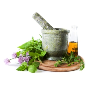 Herbal therapy provides a natural way to improve your pet's health.