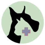 Holistic veterinary services at Healing Paws Center